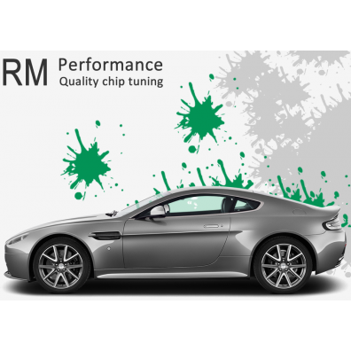RM chip-tuning